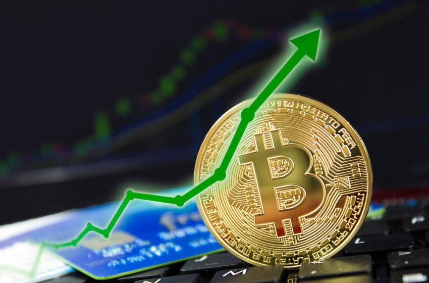 bitcoin cifre de piață