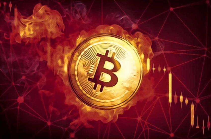 cele mai bune site- uri pentru tranzacționarea bitcoins